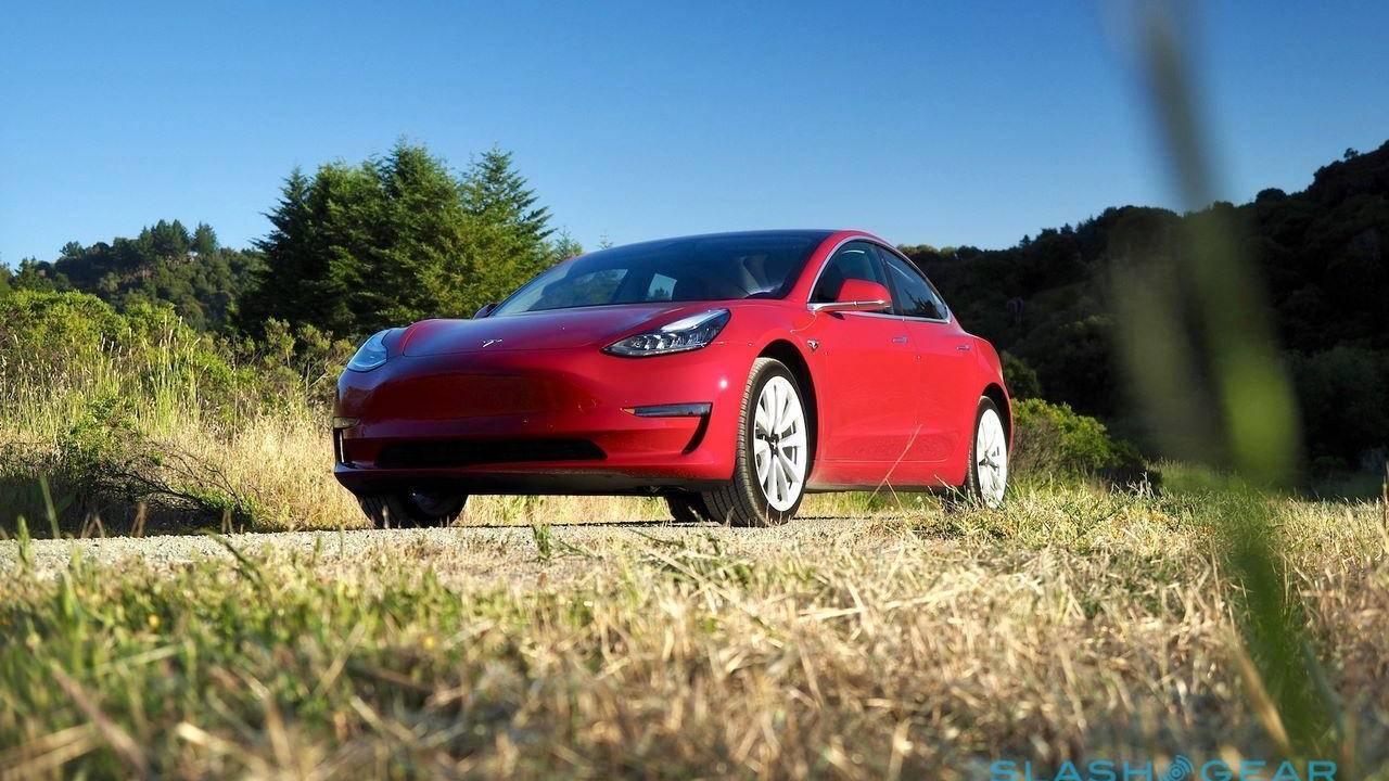 Илон Маск пообещал «исправить» дороговизну электромобилей Tesla