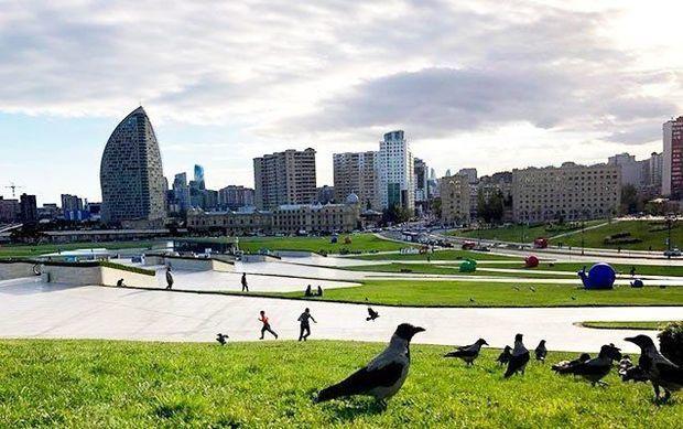 Завтра в Азербайджане будет до 29 градусов тепла