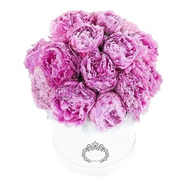 Цветы купить онлайн пионы в одессе